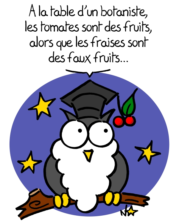 Fruits ou faux fruits? Sauvages du Poitou!